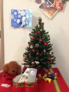 ③kクリスマス写真 (2)
